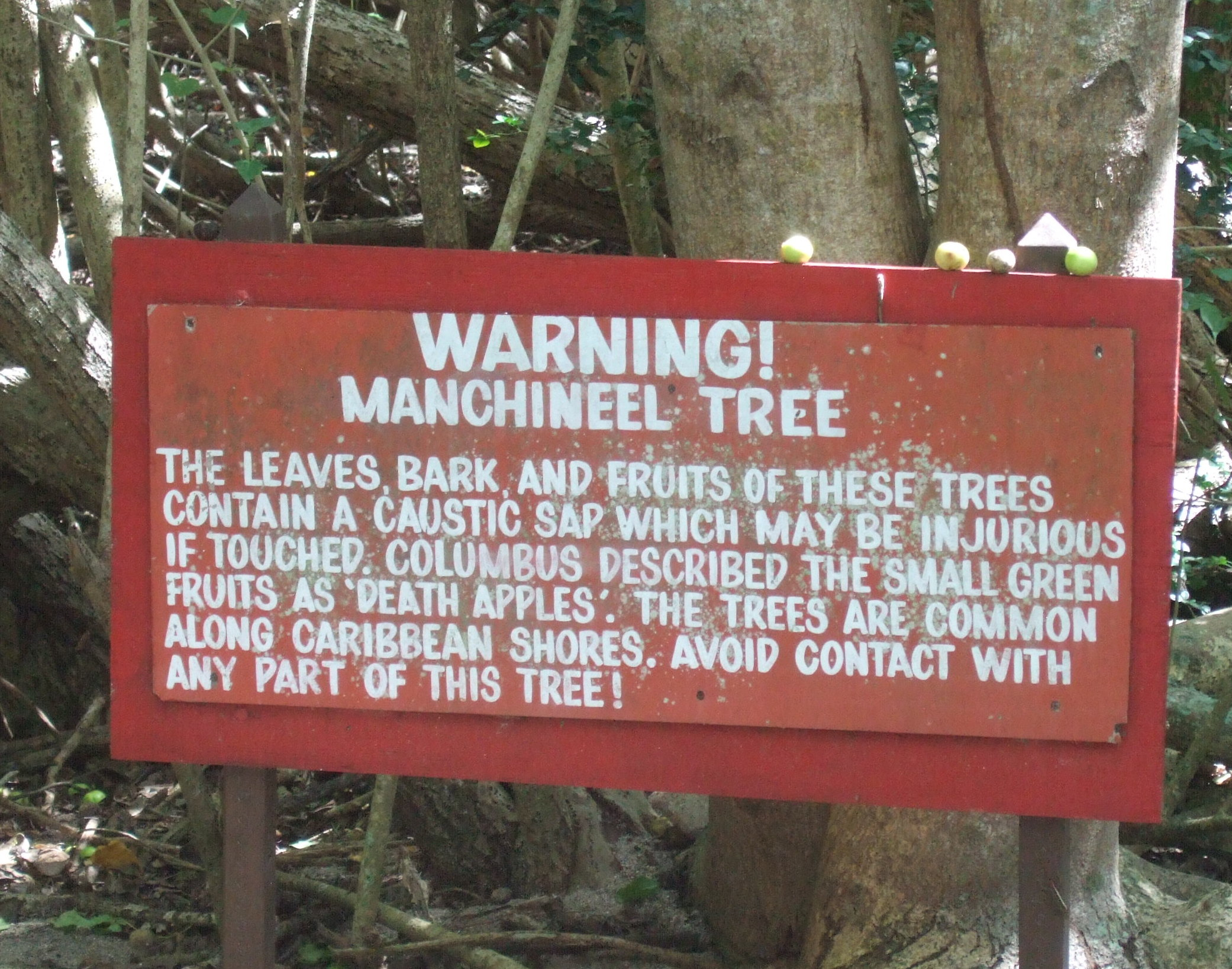 poisonous-tree